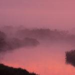 Biebrzański PN Biebrza National Park 0722