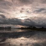 Dolina Narwi Narew River Valley 6890