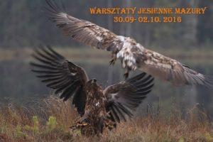 Jesiene Warsztaty 2016
