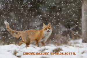 Zimowe Mazury 2017 piska