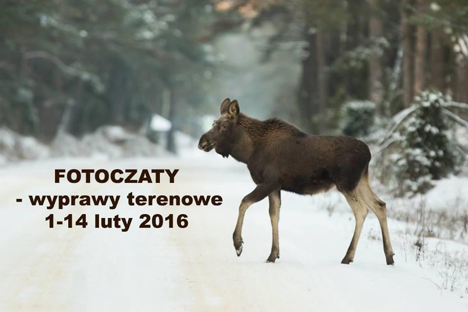 wyprawy zimowe luty 2016